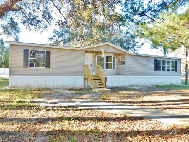 18809 Akins Drive, Spring Hill, FL 34610 (MLS #T3147250) :: NewHomePrograms.com LLC