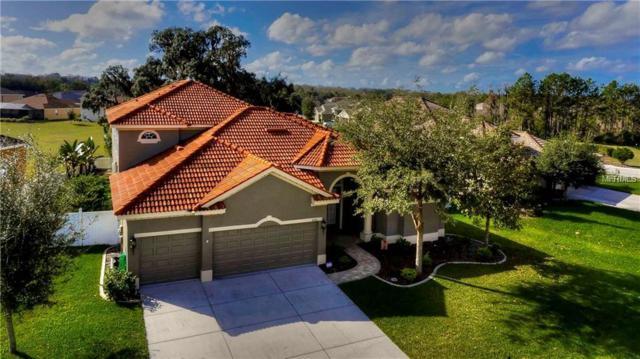 8310 Creedmoor Lane, New Port Richey, FL 34654 (MLS #T3147259) :: NewHomePrograms.com LLC