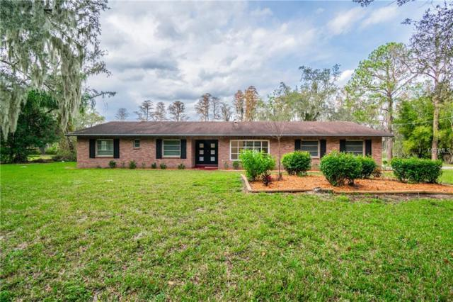 19102 Rogers Road, Odessa, FL 33556 (MLS #T3147284) :: Homepride Realty Services