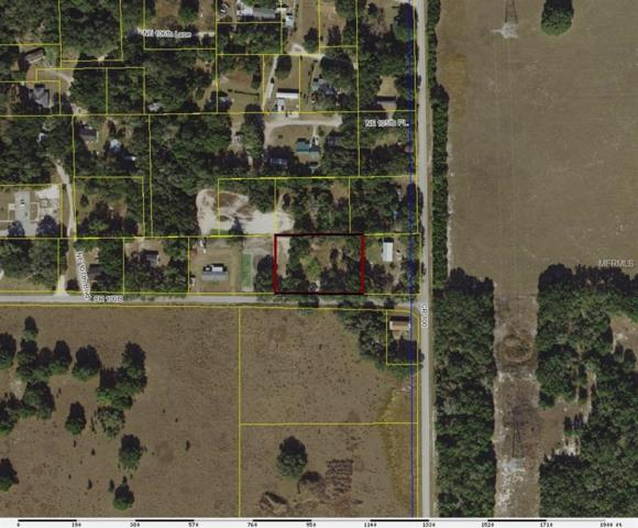 Cr 100B, Lady Lake, FL 32162 (MLS #T3147351) :: The Duncan Duo Team