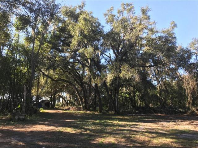 Bledsoe Loop, Lithia, FL 33547 (MLS #T3147433) :: Team Bohannon Keller Williams, Tampa Properties