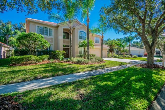 18105 Courtney Breeze Drive, Tampa, FL 33647 (MLS #T3147578) :: Revolution Real Estate