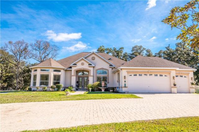 7050 Quarterhorse Lane, Brooksville, FL 34604 (MLS #T3147610) :: Ideal Florida Real Estate