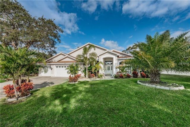 2994 Country Woods Lane, Palm Harbor, FL 34683 (MLS #T3147747) :: Jeff Borham & Associates at Keller Williams Realty