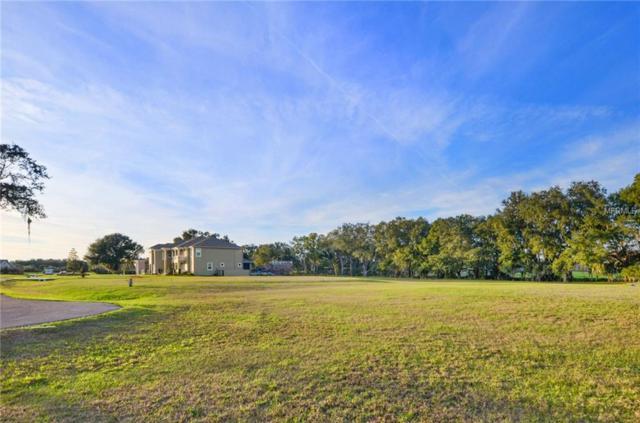 2706 Heavenly Court, Lutz, FL 33559 (MLS #T3147800) :: Cartwright Realty