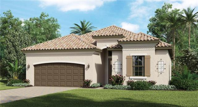 24189 Gallberry Drive, Venice, FL 34293 (MLS #T3147998) :: The Duncan Duo Team