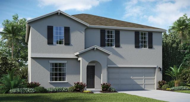 169 Taft Drive, Davenport, FL 33837 (MLS #T3148007) :: RE/MAX Realtec Group