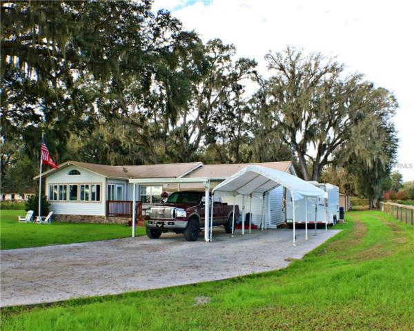 5201 Bugg Road, Plant City, FL 33567 (MLS #T3148018) :: Remax Alliance