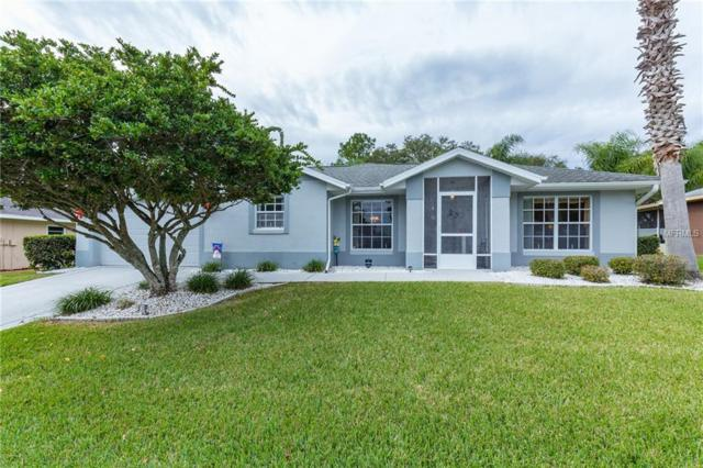 10334 Moshie Lane Lane, San Antonio, FL 33576 (MLS #T3148035) :: Delgado Home Team at Keller Williams