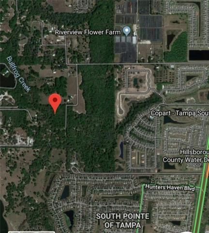 12023 Fred Drive, Riverview, FL 33578 (MLS #T3148175) :: Griffin Group