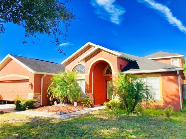 6610 Brighton Park Drive, Apollo Beach, FL 33572 (MLS #T3148423) :: Team Bohannon Keller Williams, Tampa Properties