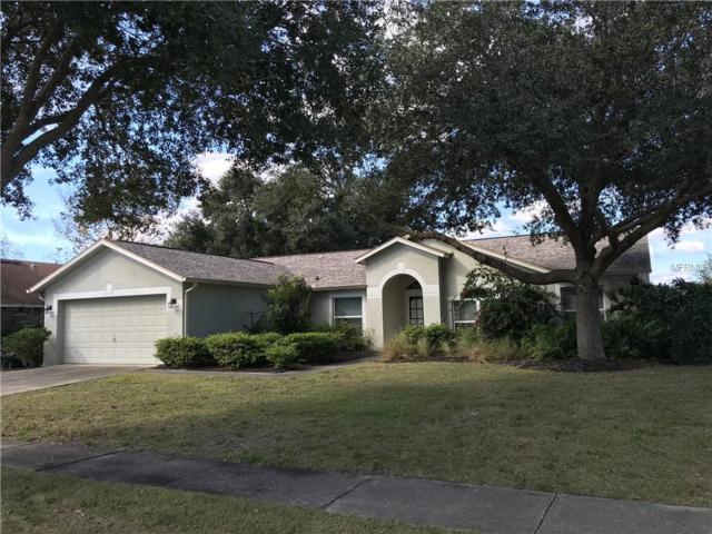 10623 Foxcrest Way, Riverview, FL 33569 (MLS #T3148503) :: Jeff Borham & Associates at Keller Williams Realty