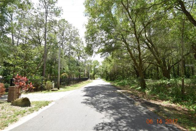 Timberwood Drive, Tampa, FL 33625 (MLS #T3149231) :: The Duncan Duo Team