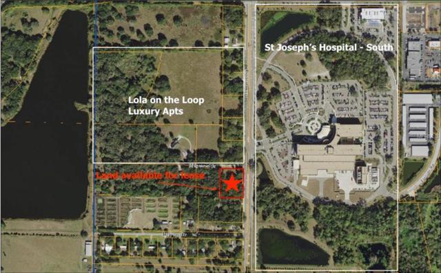 6816 Simmons Loop, Riverview, FL 33578 (MLS #T3149280) :: The Duncan Duo Team