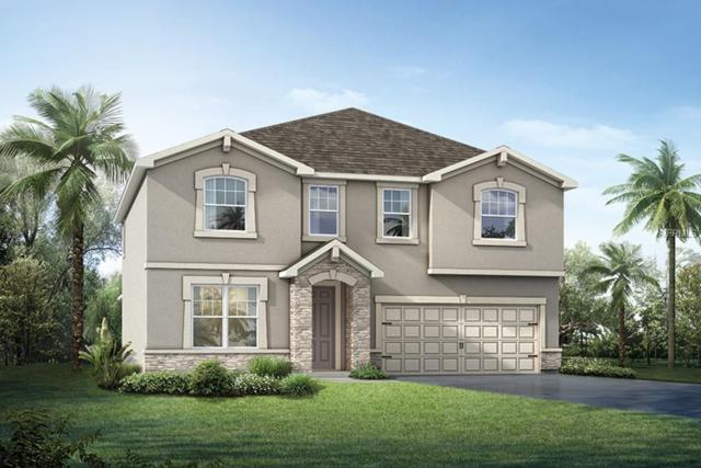 13225 Orca Sound Drive, Riverview, FL 33579 (MLS #T3149284) :: The Duncan Duo Team