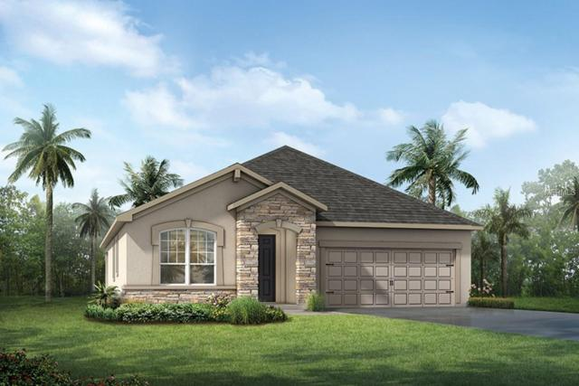 13015 Rain Lily Drive, Riverview, FL 33579 (MLS #T3149291) :: The Duncan Duo Team