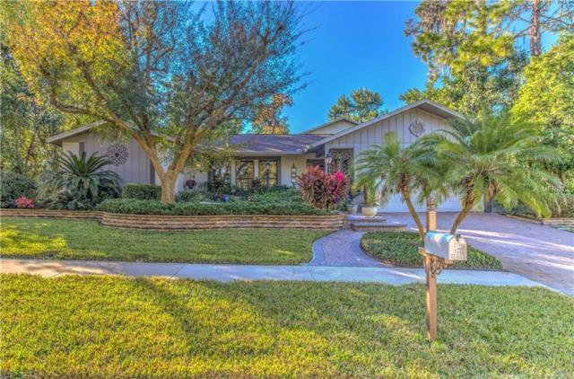 849 Park Court, Palm Harbor, FL 34683 (MLS #T3149335) :: Burwell Real Estate