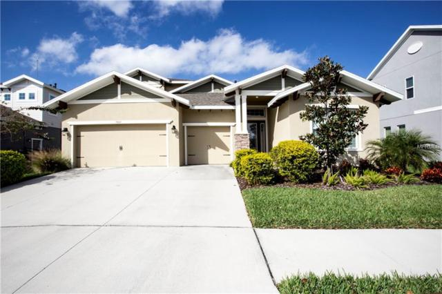 5809 Jasper Glen Drive, Lithia, FL 33547 (MLS #T3149413) :: The Duncan Duo Team