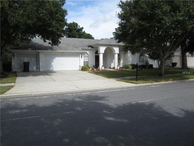 18415 Bittern Avenue, Lutz, FL 33558 (MLS #T3149480) :: Griffin Group