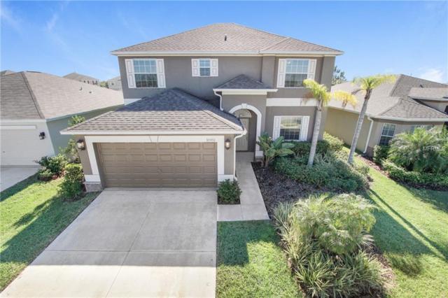 10951 Rainbow Pyrite Drive, Wimauma, FL 33598 (MLS #T3149510) :: Arruda Family Real Estate Team