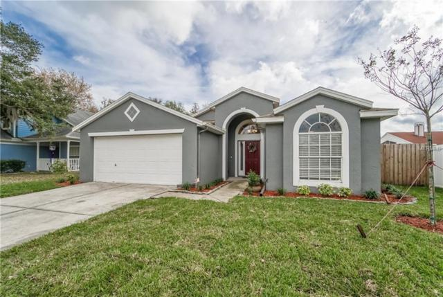 28924 Long Meadow Loop, Wesley Chapel, FL 33543 (MLS #T3149613) :: The Duncan Duo Team