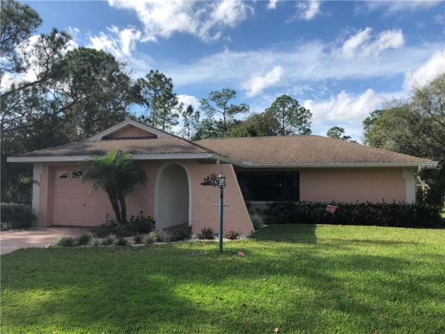 4011 Cantoria Avenue, Sebring, FL 33872 (MLS #T3149753) :: Homepride Realty Services