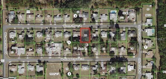 2116 W Deer Trail Ln, Lecanto, FL 34461 (MLS #T3149778) :: The Duncan Duo Team