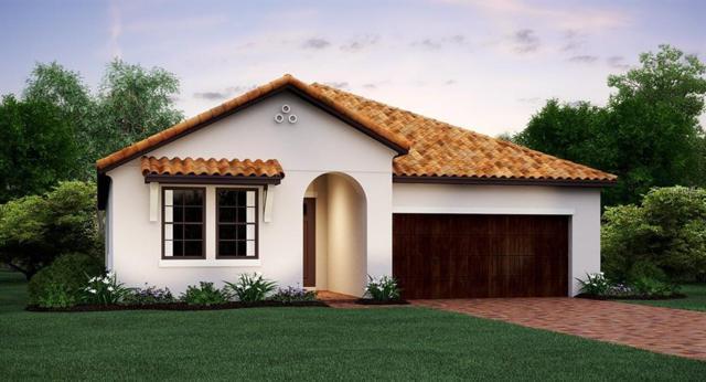 16862 Scuba Crest Street, Wimauma, FL 33598 (MLS #T3149800) :: Jeff Borham & Associates at Keller Williams Realty