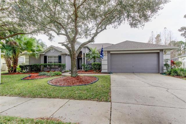 10746 Ayrshire Drive, Tampa, FL 33626 (MLS #T3149822) :: The Duncan Duo Team