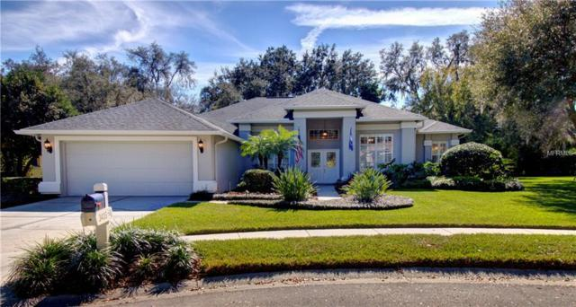 3405 Shadowood Drive, Valrico, FL 33596 (MLS #T3149842) :: Griffin Group