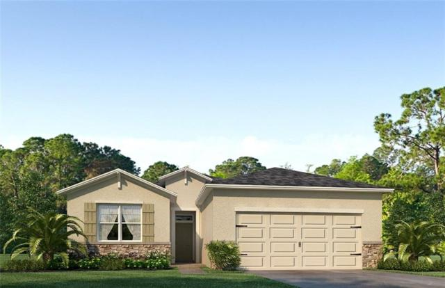 4115 Mossy Limb Court, Palmetto, FL 34221 (MLS #T3149856) :: Team Bohannon Keller Williams, Tampa Properties