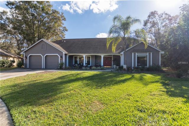 3807 Blackwood Place, Valrico, FL 33596 (MLS #T3149874) :: Team Bohannon Keller Williams, Tampa Properties