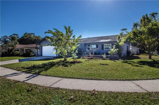 135 Kendale Drive, Safety Harbor, FL 34695 (MLS #T3149883) :: Jeff Borham & Associates at Keller Williams Realty