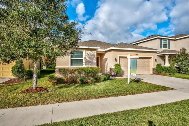 11621 Storywood Drive, Riverview, FL 33578 (MLS #T3149902) :: Dalton Wade Real Estate Group