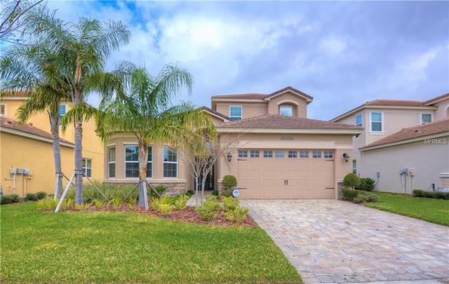 31275 Spruceberry Court, Wesley Chapel, FL 33543 (MLS #T3149970) :: Arruda Family Real Estate Team