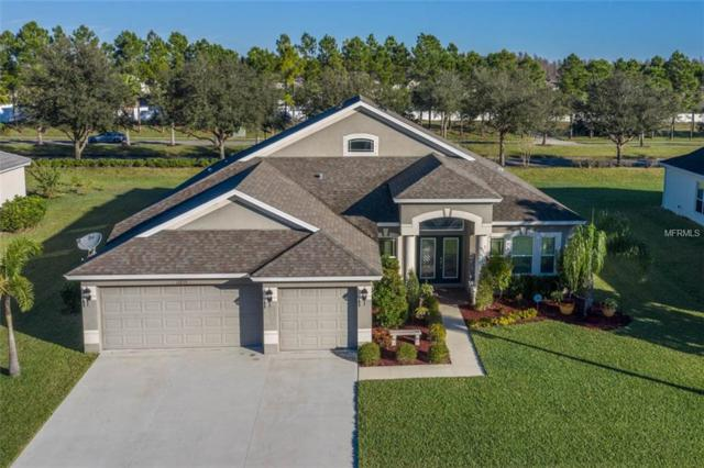 11855 Newberry Grove Loop, Riverview, FL 33579 (MLS #T3150101) :: Mark and Joni Coulter | Better Homes and Gardens