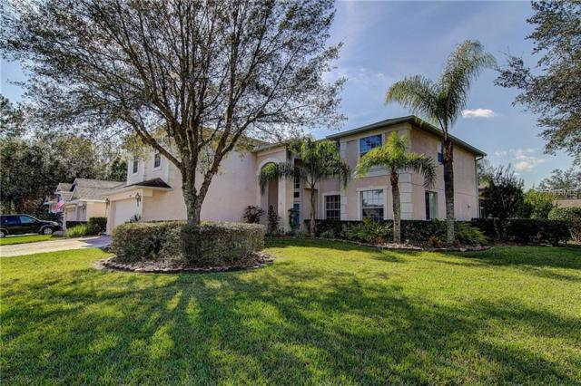 16306 Doune Court, Tampa, FL 33647 (MLS #T3150112) :: Medway Realty