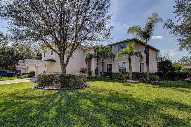 16306 Doune Court, Tampa, FL 33647 (MLS #T3150112) :: Remax Alliance
