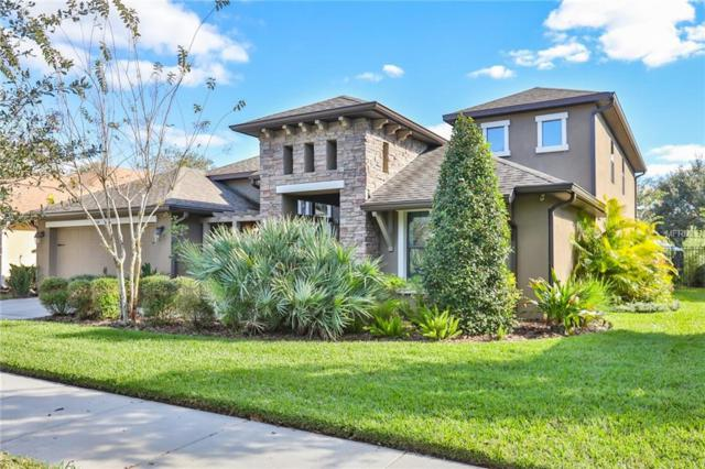 15739 Starling Water Drive, Lithia, FL 33547 (MLS #T3150171) :: The Duncan Duo Team