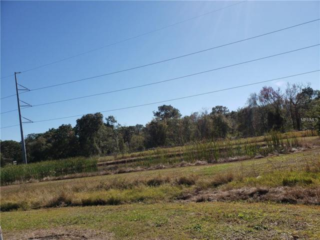 W Address Not Published, Tampa, FL 33625 (MLS #T3150203) :: Team Bohannon Keller Williams, Tampa Properties