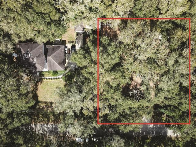 3004 Spring Green Drive, Lutz, FL 33559 (MLS #T3150292) :: The Duncan Duo Team
