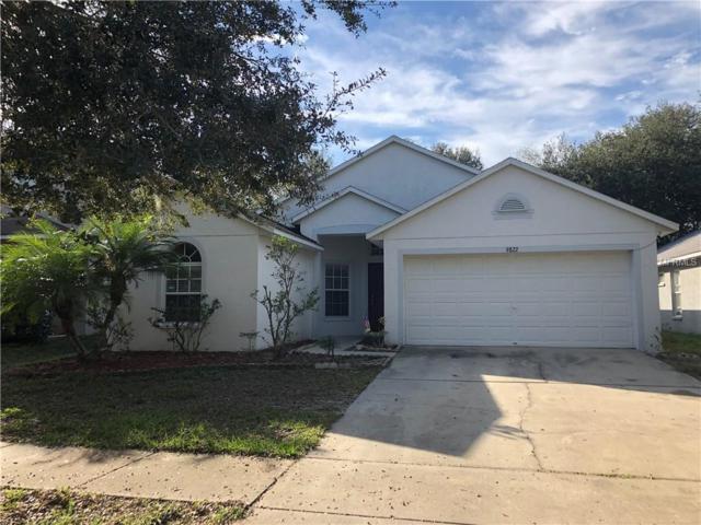 9822 White Barn Way, Riverview, FL 33569 (MLS #T3150312) :: Jeff Borham & Associates at Keller Williams Realty