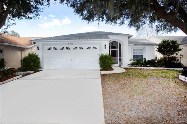 6110 Becklin Place, Riverview, FL 33578 (MLS #T3150353) :: Arruda Family Real Estate Team