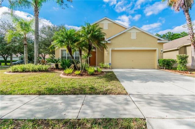 18618 Le Dauphine Place, Lutz, FL 33558 (MLS #T3150379) :: Griffin Group