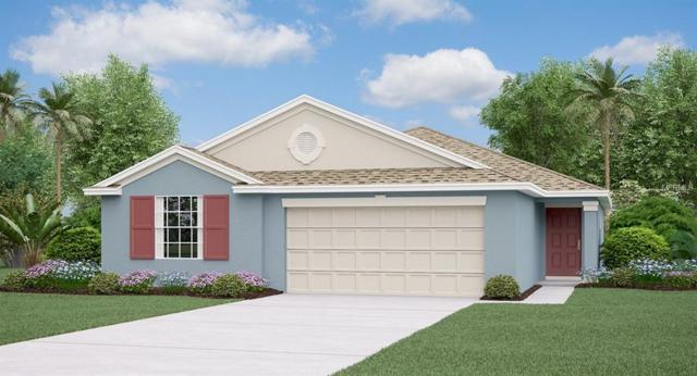 10605 Fuzzy Cattail Street, Riverview, FL 33578 (MLS #T3150487) :: The Duncan Duo Team