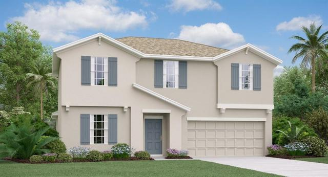 10613 Fuzzy Cattail Street, Riverview, FL 33578 (MLS #T3150506) :: The Duncan Duo Team