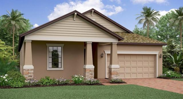 13338 Wildflower Meadow Drive, Riverview, FL 33579 (MLS #T3150527) :: The Duncan Duo Team