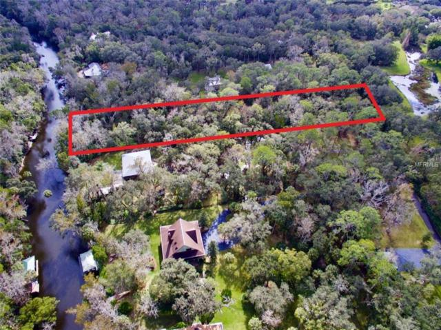 9249-9297 Carr Road, Riverview, FL 33569 (MLS #T3150547) :: Lovitch Realty Group, LLC