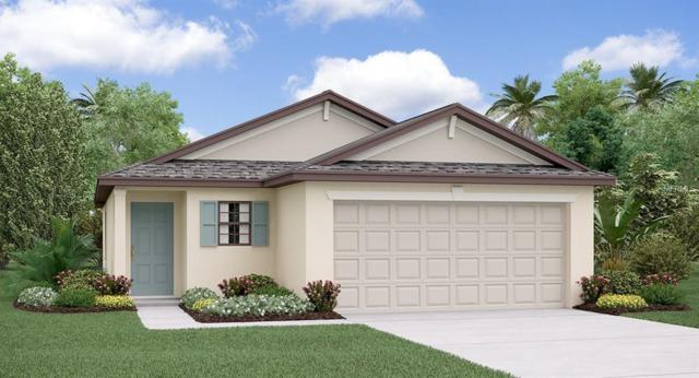 10017 Rosemary Leaf Lane, Riverview, FL 33578 (MLS #T3150598) :: The Duncan Duo Team