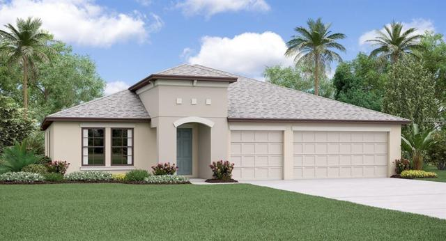 11116 Carlton Fields Drive, Riverview, FL 33579 (MLS #T3150611) :: The Duncan Duo Team